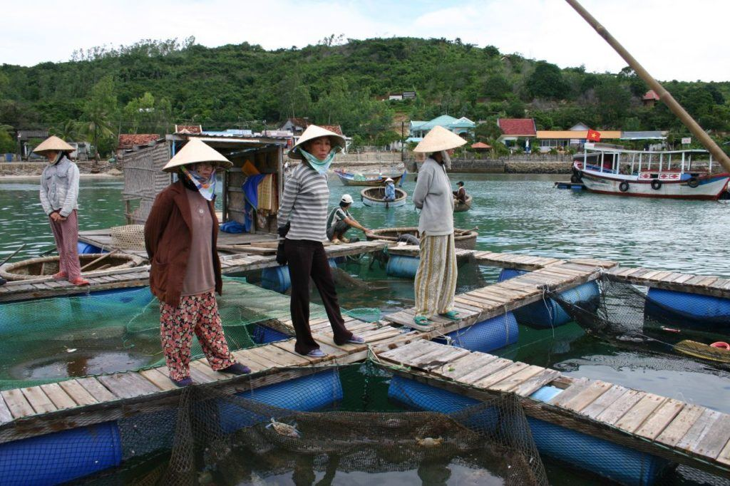 Vietnamese women wait for buyers at the floating fish market near Nha Trang.