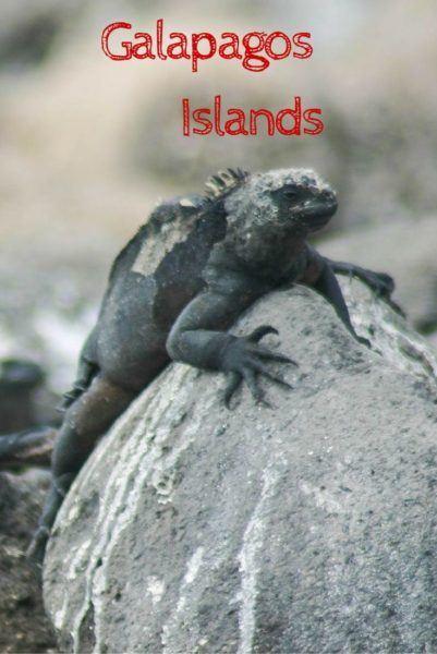 World Heritage Site Galapagos Island.