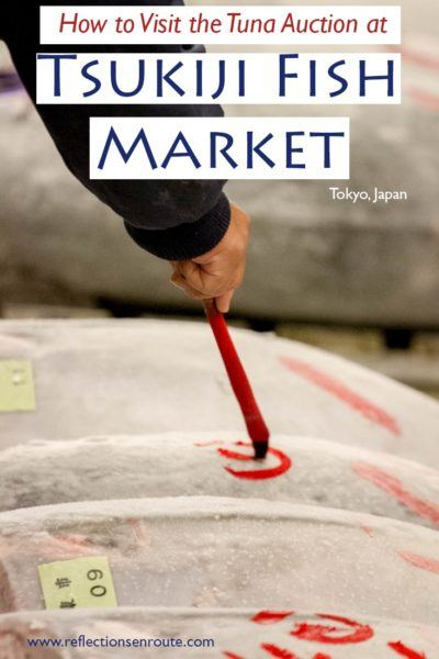 Japan always delivers the best activities, and watching the world-famous tuna auction at the Tsukiji Fish Market is a must!