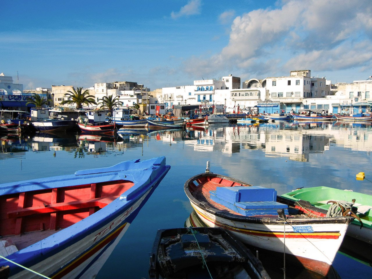 Sidi Bou Said Harbor, one of the most beautiful things to do from Tunis.