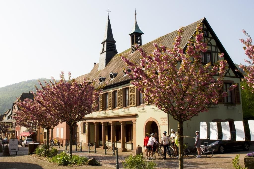 Spring Alsace
