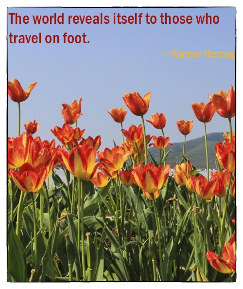 Travel Inspiration by foot