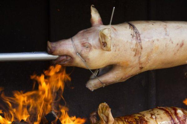 Young suckling pig on the spit in Croatia.