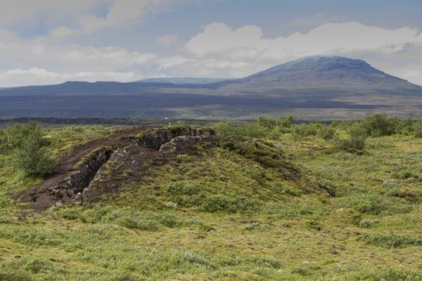 A burst stone bubble in the ground forms a small hill in Thingvellir National Park.