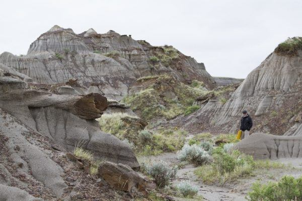 Jim is out in the badlands digging for dinosaurs.