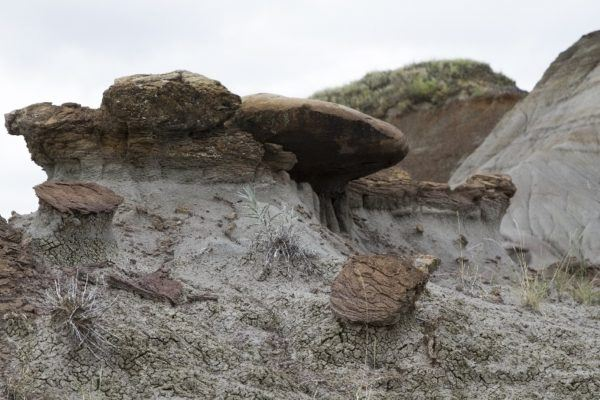 Interesting erosion geography in the dinosaur fossil grounds at Dinosaur Provincial Park.