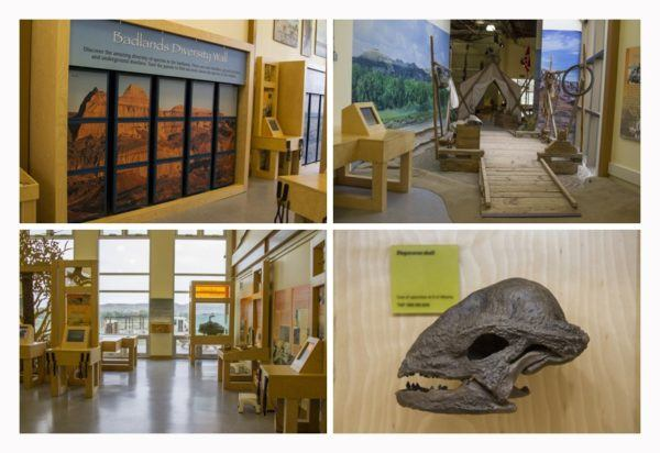 Some of the exhibits on display in the Dinosaur Provincial Park interactive museum.