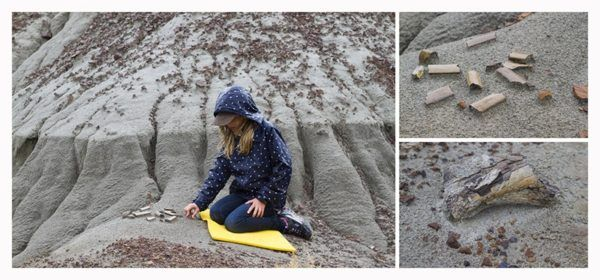 Young girl at Dinosaur Provincial Park on a successful dinosaur fossil hunt.