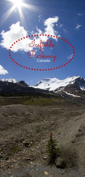 Cruising the Icefields Parkway Canada.