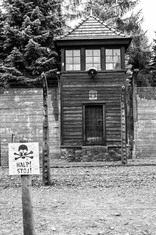 70th Liberation Auschwitz