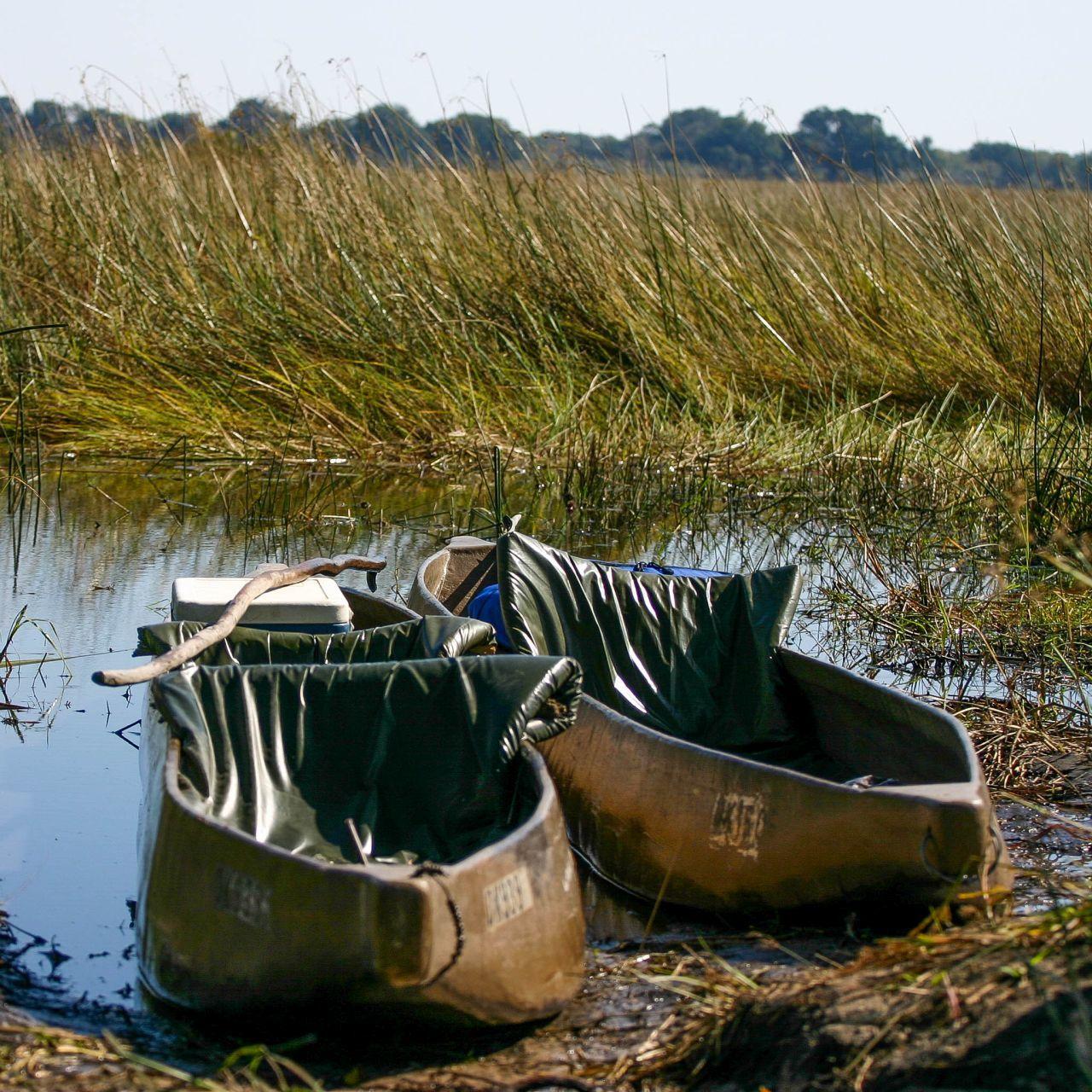 Okavango Delta - A World Heritage Site