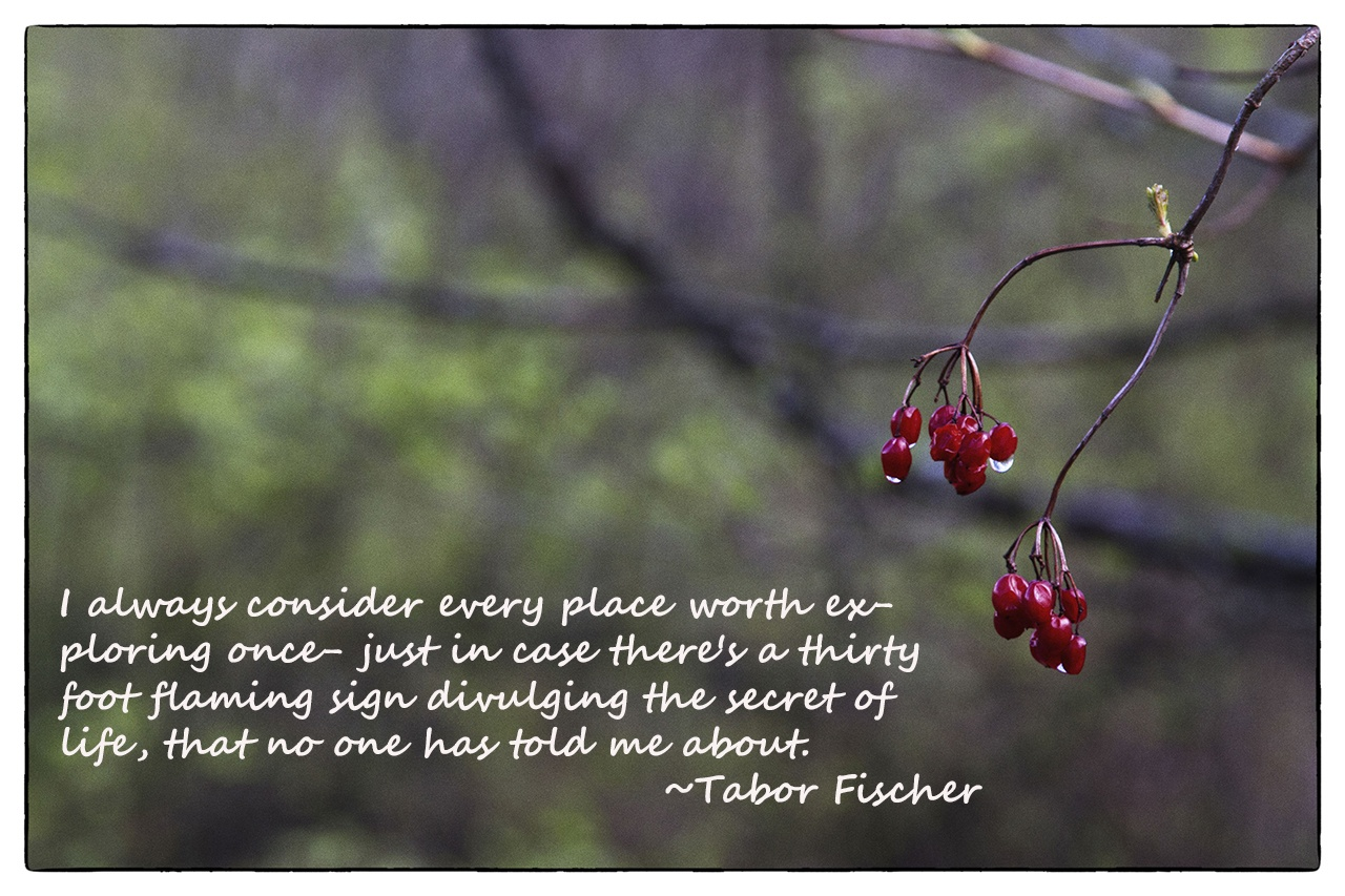 Weekend Travel Inspiration - Tabor Fischer