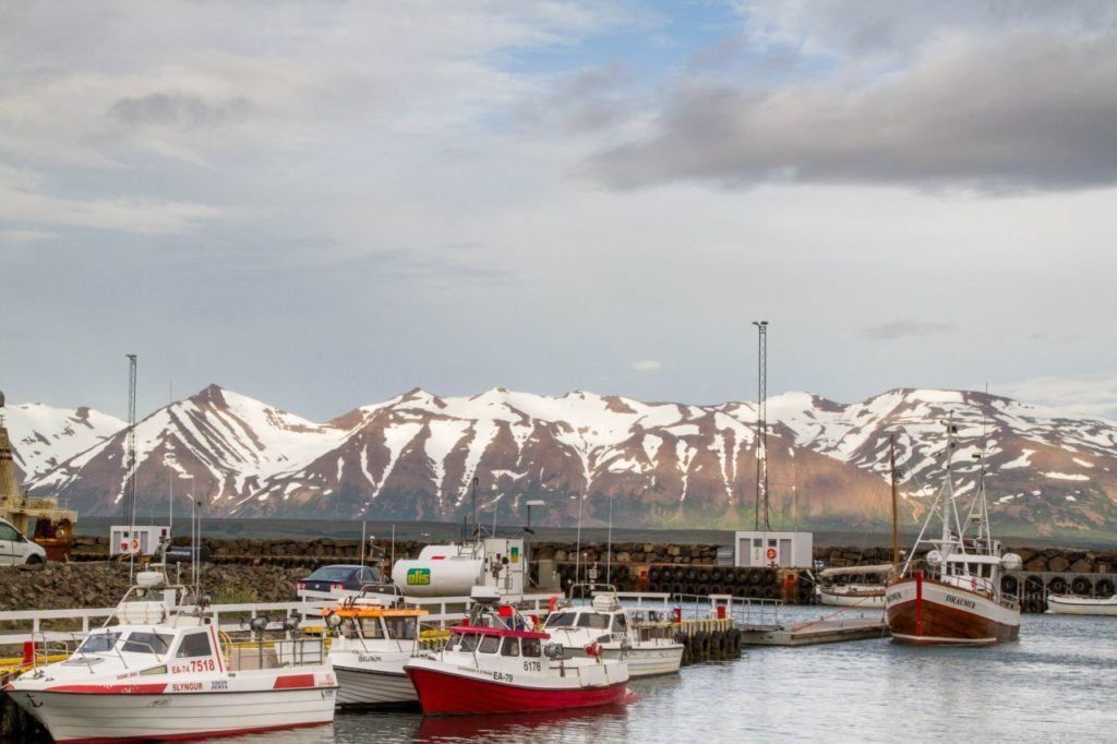 A small fishing harbor in the north of Iceland.
