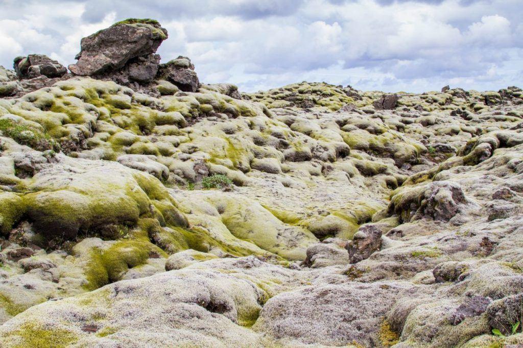 Moss covered rocks create an eerie, alien landscape.