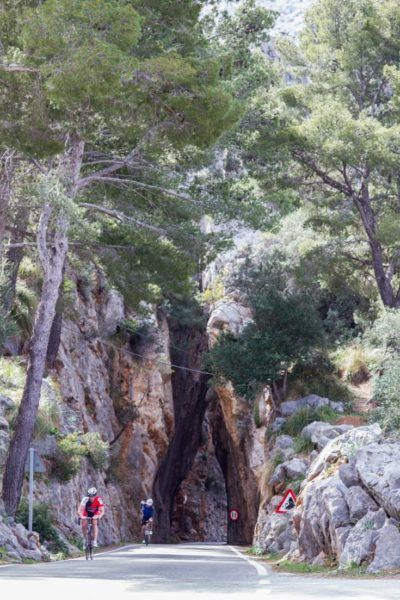 Bicyclists love training in Mallorca, because of the varied terrain.