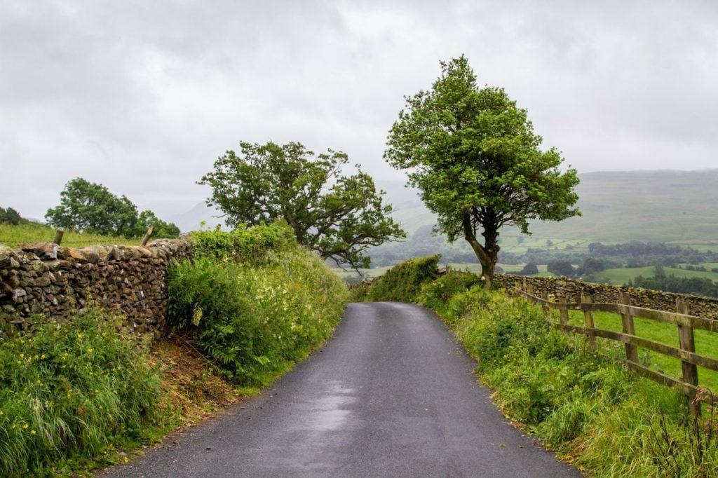 Beautiful backroad driving between stonewalls and sheep pastures.