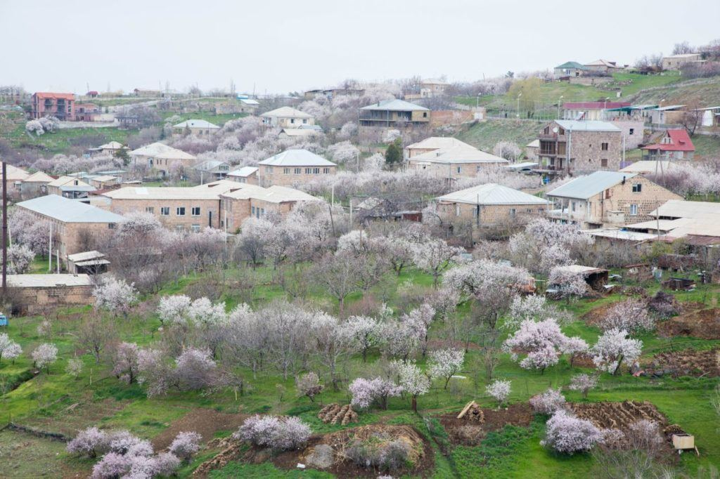 Spring blooms shine over the valley in Geghard.