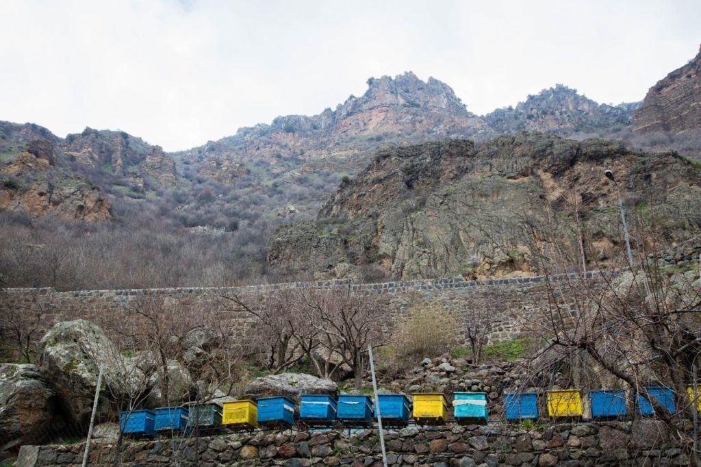 Bee hives line the Geghard Monastery.