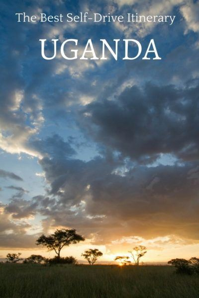Is a Gorilla or Chimpanzee African safari on your bucket list? This is the perfect Uganda road trip.