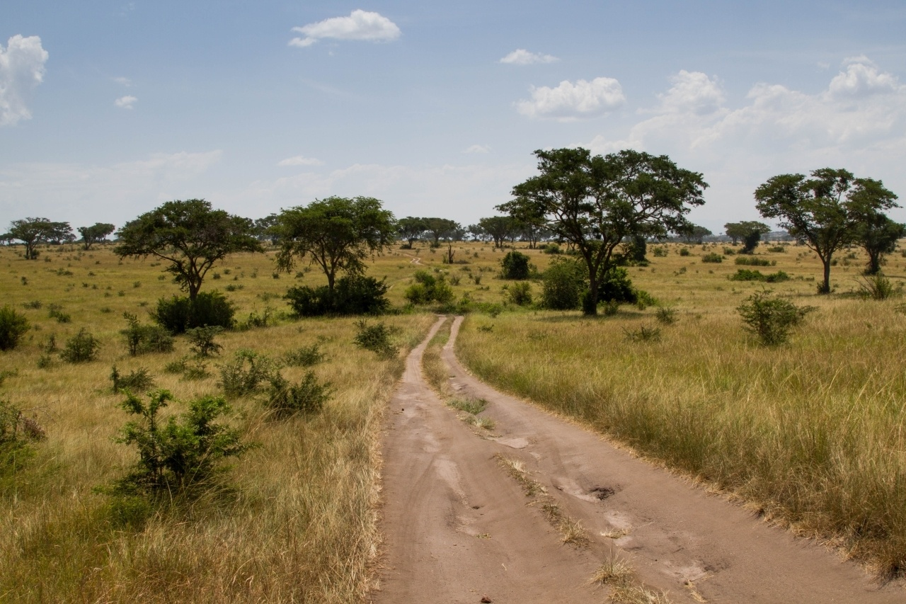 Best Itinerary for a Uganda Self-Drive