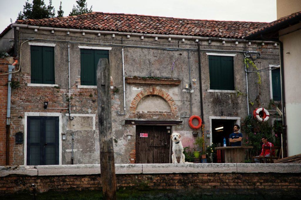 Sites outside of the main tourist areas on our Venice batellina ride.
