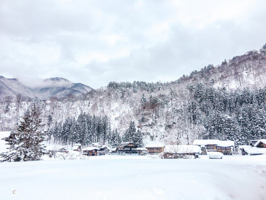 Shirakawago is the perfect place to go in winter in Japan.