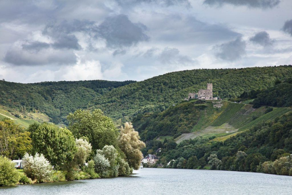 Things to do around Bernkastel - River Cruise