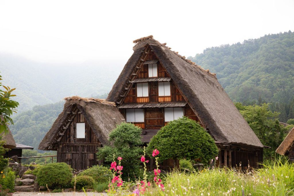 A misty morning in Shirakawago shows the thatched roof and some pretty pink flowers.