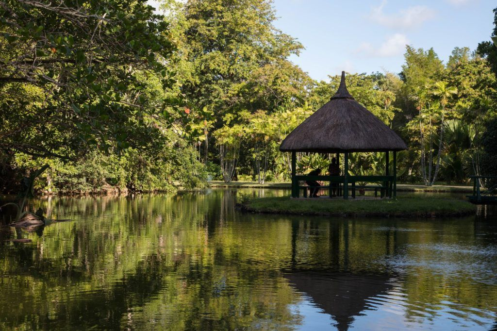 A gazebo in the botancial gardens provide this couple shade and relaxation.
