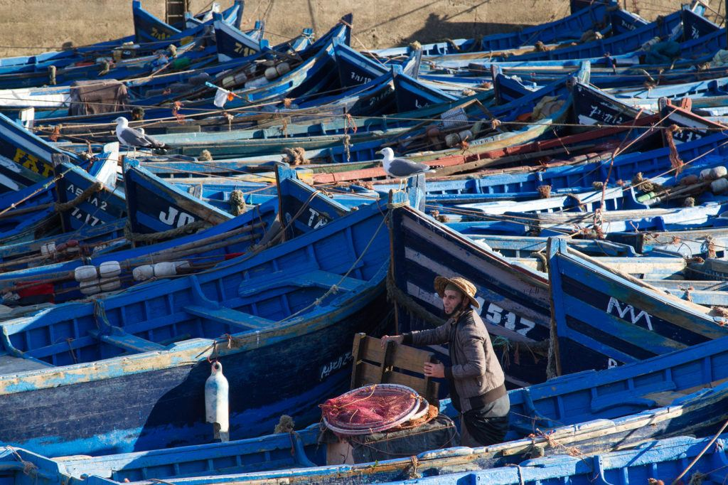 These blue fishing boats in and around the harbor are part of the reason Essaouira is such a beautiful city.