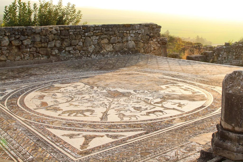 The Orpheus Mosaic with lions, tigers, elephants and more at the Roman ruins in Volubilis.