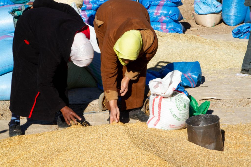 Two women check out a pile of grain in the section of the Berber market dedicated to grains.