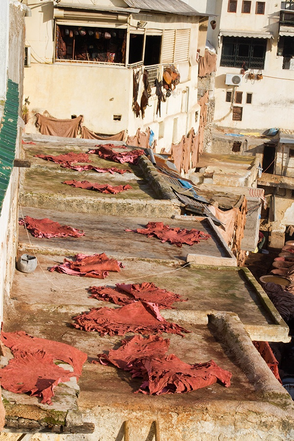 Pelts drying on the Moroccan tannery roof.