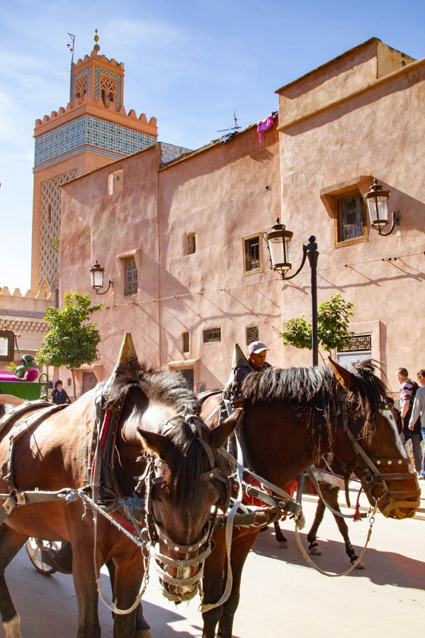 A pair of horses pulling a cart past the Koutoubia Mosque in Marrakesh, Morocco.