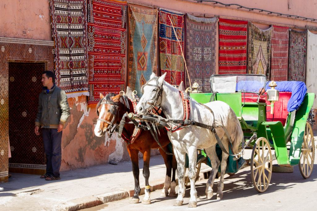 A cart pulled by two horses is stopped in front of a Marrakesh rug shop, which has several rugs displayed on the wall.