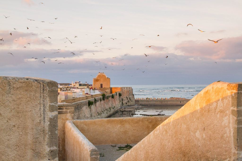View of the old city walls and Atlantic Ocean with a flock of seagulls flying overhead.