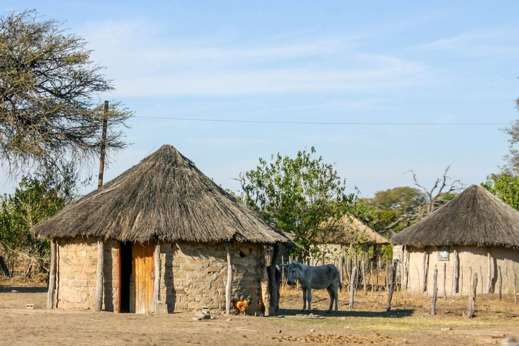 A cluster of round mudbrick huts with cone-shaped thatch roofs (rondavels) in Seronga.