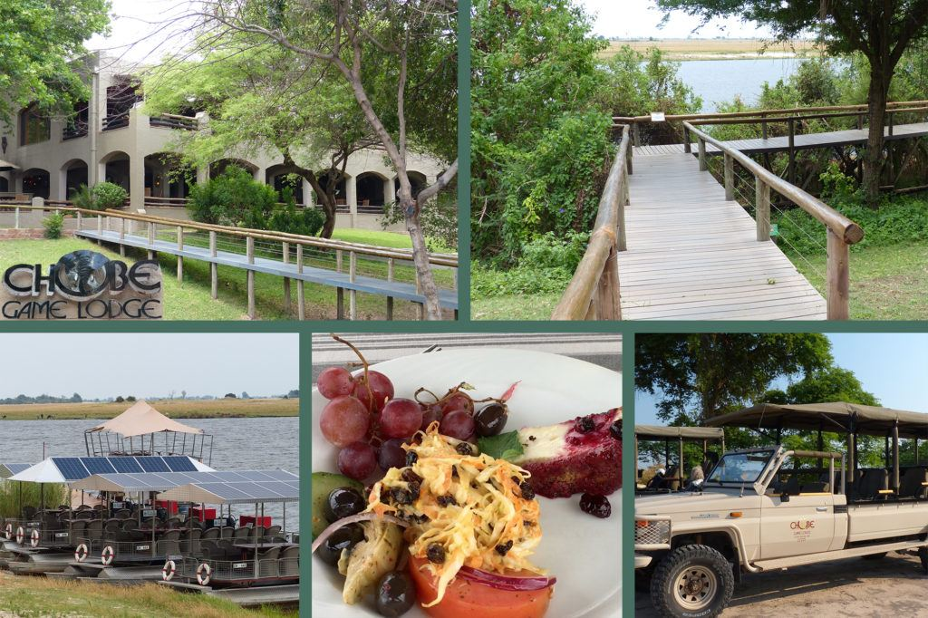 Photo collage of scenes in and around the Chobe Game Lodge, the perfect place to see the Chobe swimming elephants.