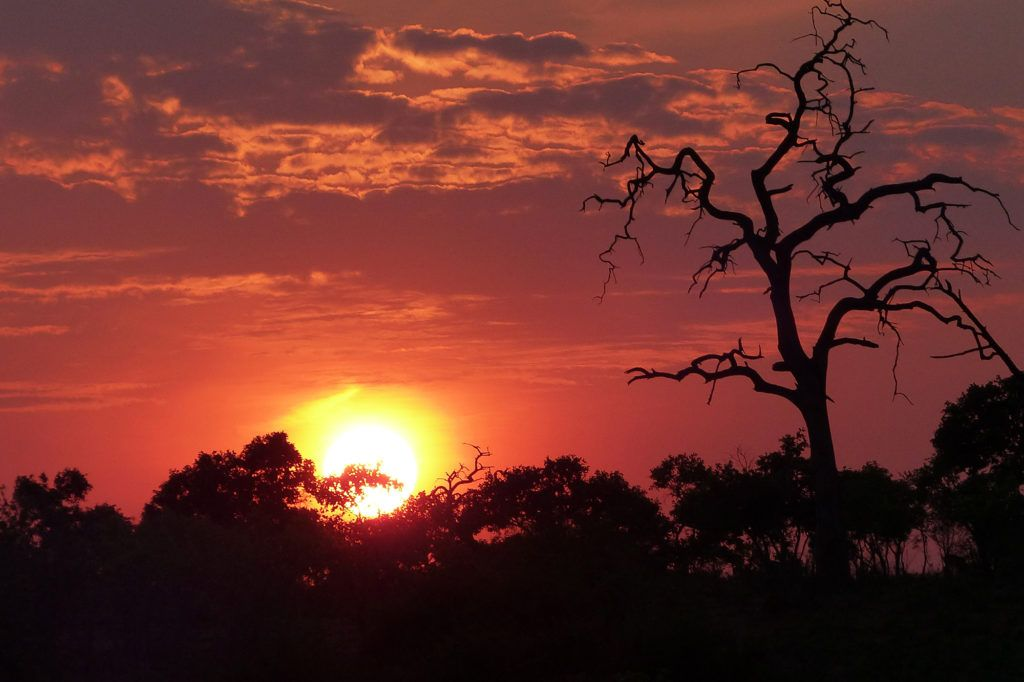 A gorgeous flame-red sunrise in Chobe National Park.