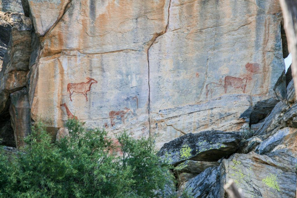 Rock paintings at Tsodilo, where humans have lived or stopped over for thousands of years.