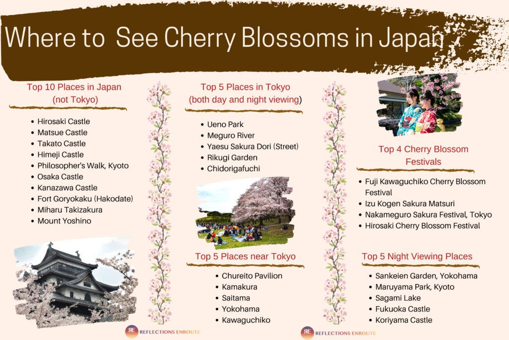 Where to See Cherry Blossoms in Japan Infographic.