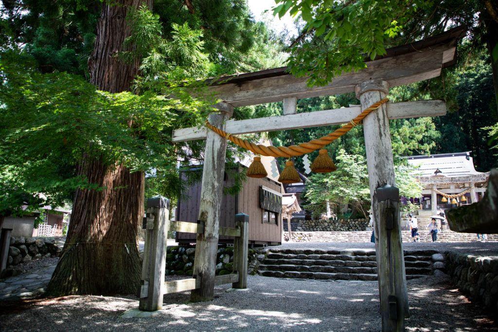 The Hatogaya Hachiman Shrine is as peaceful as it gets in Shirakawago in summer.