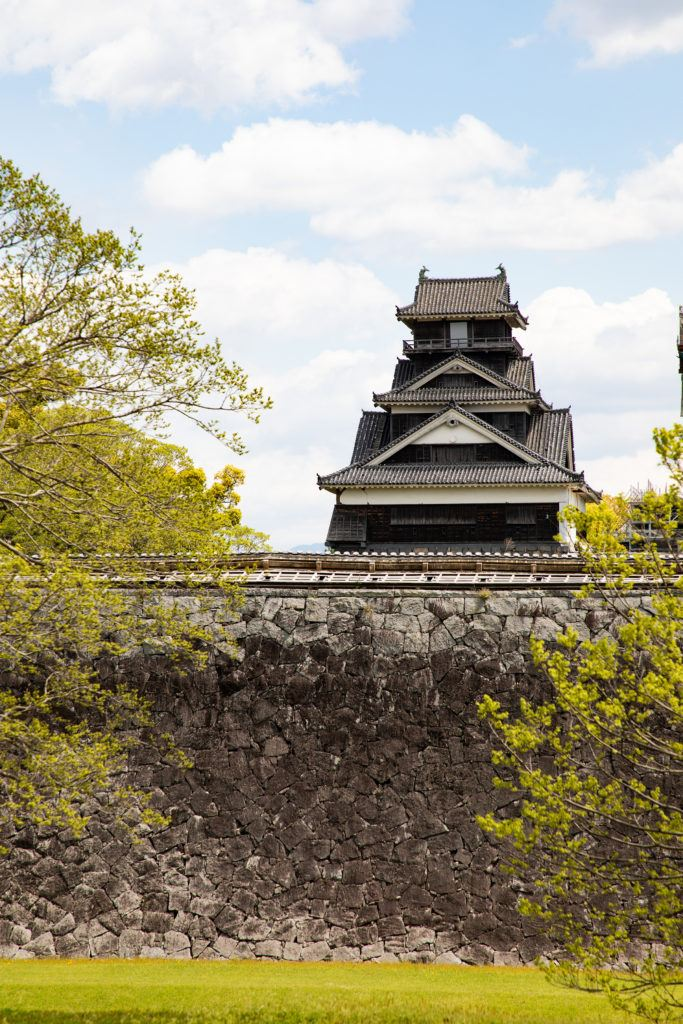 Lime green, new leaves frame this Japanese castle during early spring.