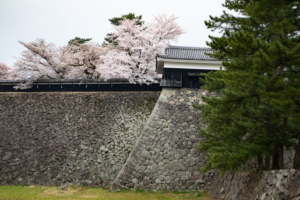 The pink trees accessorize the hard gray stones of the old castle walls.