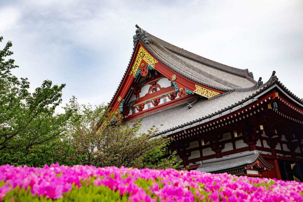 A beautiful spring day at Sensoji Temple in Tokyo.