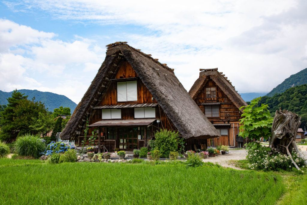 The world heritage village of Ogimachi has many thatched roofed homes to tour.