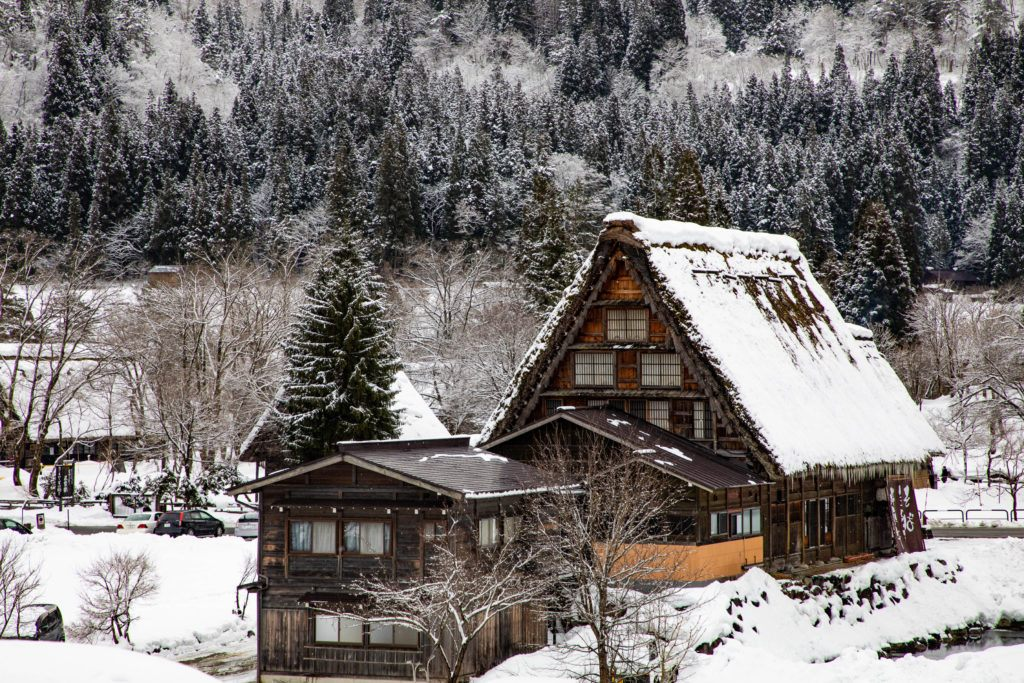 Snow on the ground and thatched roof.