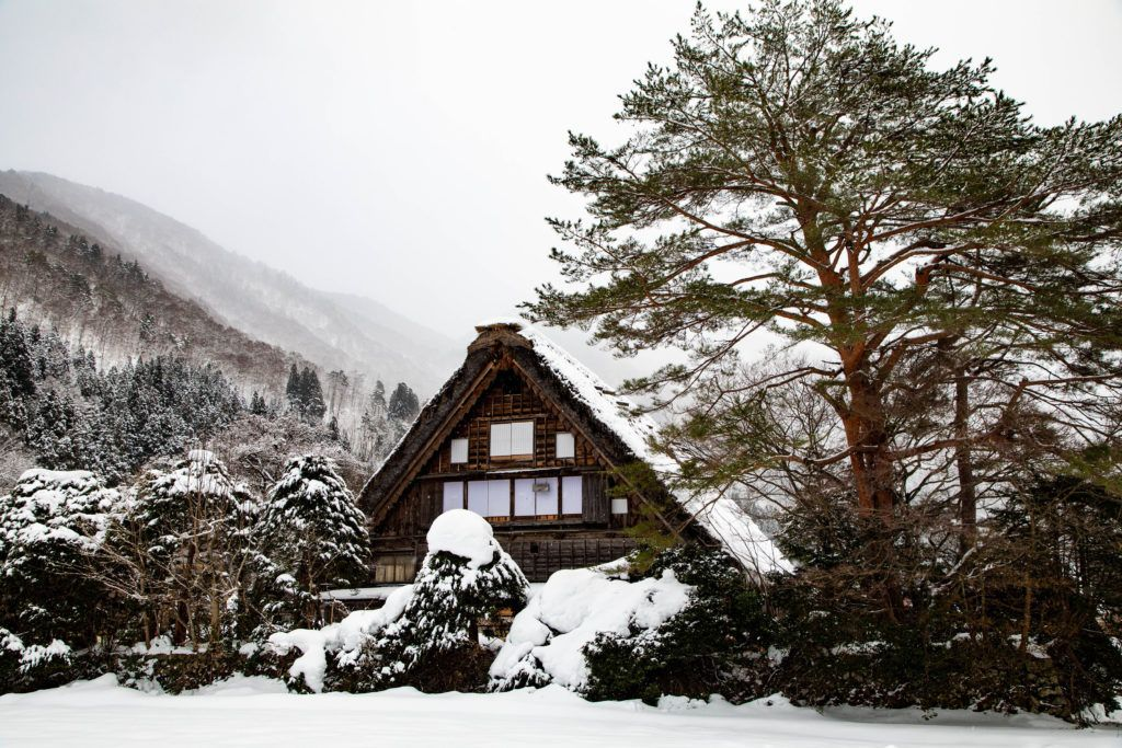 A charming winter scene with the traditional thatched roof house.