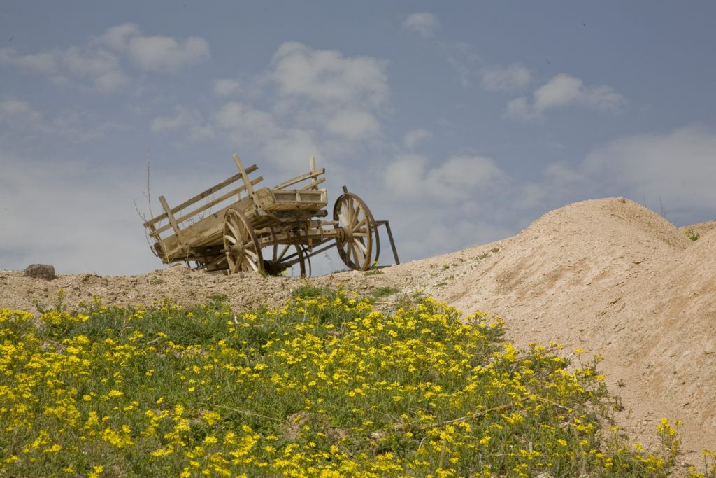 A broken-down wagon sitting on a hill above a patch of yellow flowers near Uchisar, Turkey.