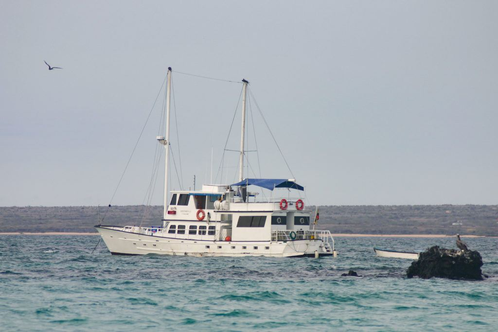 Our small Galapagos cruise boat, the Golondrina.